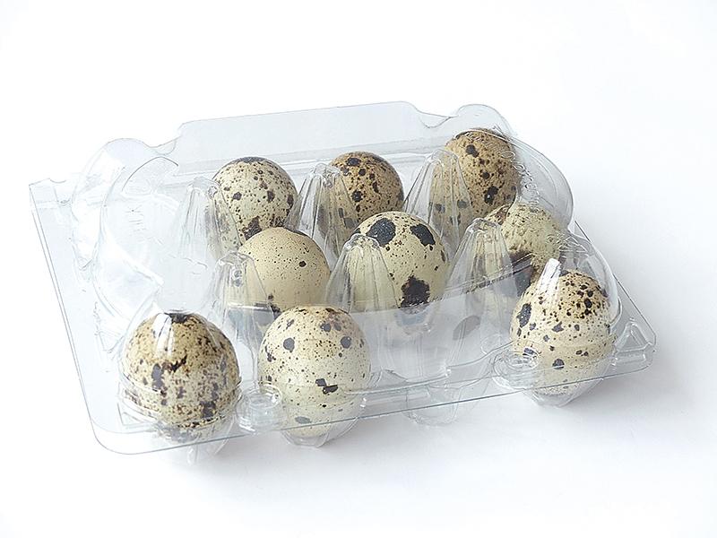 Wachteleierschachtel PET  für 12 Eier