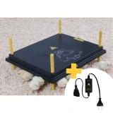 Kücken Wärmeplatte 40x50cm 50 Watt mit Temperatur Regler