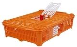 Transportkiste für Tauben und Wachteln 67x40x13cm