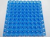 Wachteleier Tray für 72 Eier aus Kunststoff