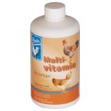Backs Multivitamin 500 ml